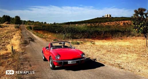 Strada dei Vini Doc Castel del Monte Foto